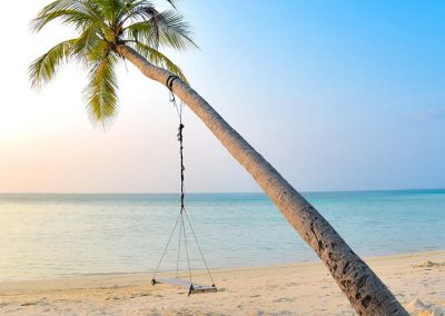 Swing hang on coconut tree near seashore